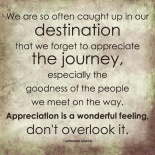 Appreciate the Journey of Life